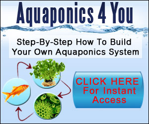 Aquaponics4You Secret - Grow Up To