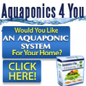 Easy Aquaponics DIY for Family Survival