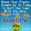 Growing Tomatoes - Aquaponics 4 you