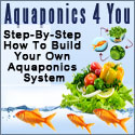 Growing Plants - Aquaponics 4 you
