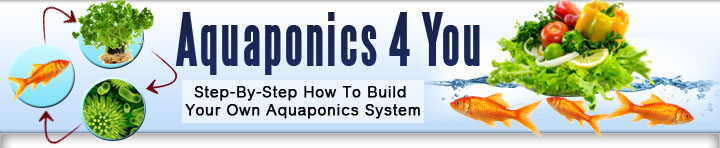 Aquaponics 4 you Review-Aquaponics 4 you Download